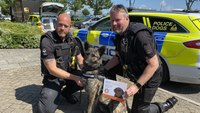 British police force using dog DNA to tackle pet thefts