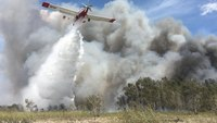 Experts fear Fla. reopenings could bring more fires after 1,200 acres burn