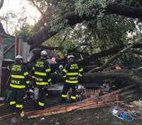 19 injured when tree falls on garage