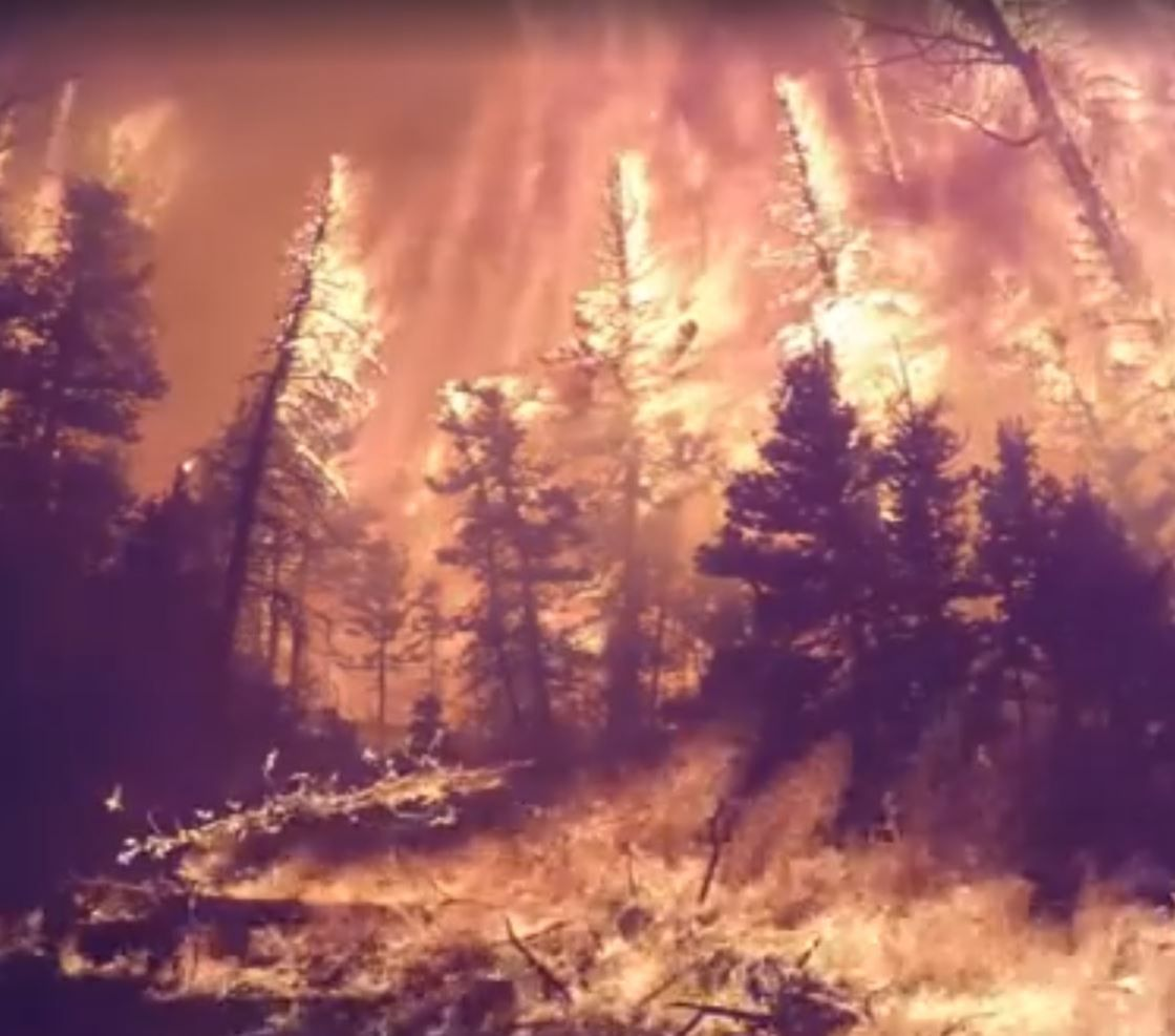 Video captures what it\'s like \'Inside a Forest Fire\'