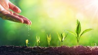 Growing your own: 6 ways to develop next-gen leaders
