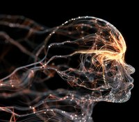 Understanding the sympathetic and parasympathetic nervous systems