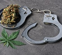 P1 Research: The marijuana conundrum in law enforcement