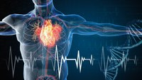 Quiz: Interpreting cardiac waveforms