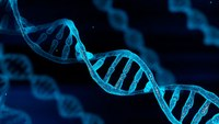 The DNA of a great officer