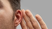 'What did you say?' Understanding the risk of hearing loss among firefighters