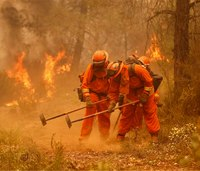 Calif. backs off easing standard for inmate firefighters