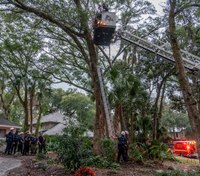Photo of the Week: Florida firefighters rescue man stuck in a tree