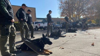 8 investments worth every penny for K-9 officers