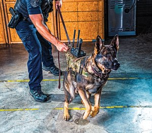 The K9-XR camera system from Tactical Electronics combines a high-definition camera, thermal imaging and two-way radio to give handlers audio and sound of what the K-9 sees.