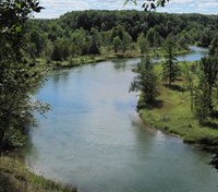 Mich. medics rescue man clinging to log in river