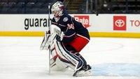 NHL goalie killed in fireworks accident