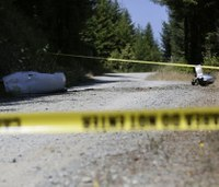 LODDs: 4 victims identified in Calif. medical plane crash
