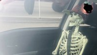 Driver with skeleton passenger in carpool lane gets a 'sternum lecture,' cops say