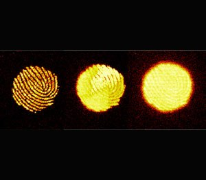 Spectrographic image of print aged over three days. (Photo Courtesy of NIST)