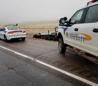 Photo of the Week: Roadside rescue
