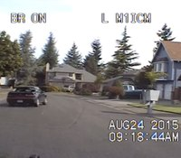 Video: Wash. cop's PIT maneuver stops suspect with pipe bombs