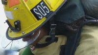 Study aims to deliver better fitting gear to female firefighters