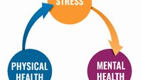The most effective ways to combat stress