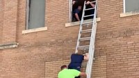 Watch: Reba McIntire rescued by FFs after stairs collapse in historic Okla. building