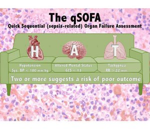 The quick SOFA is prehospital assessment for sepsis (Slide courtesy of Rom Duckworth)