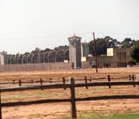 70% of inmates test positive for COVID-19 at Calif. federal prison