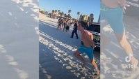 Video: Handcuffed spring breaker escapes police SUV at Fla. beach