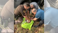 Mich. deputies rescue infant found abandoned in woods
