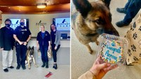 Once unwanted, shelter dog becomes PD's first K-9 in decades