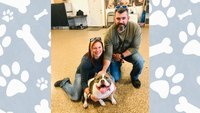 Ohio cop adopts dog she found severely wounded at crime scene