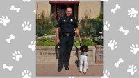 Okla. PD gets therapy dog to help officers, victims