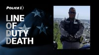Puerto Rico police sergeant shot and killed during traffic stop