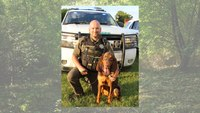 Bloodhound tracks down missing girl, 6, police arrest father