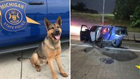 Mich. K-9 dies after fiery crash with DUI suspect, police say