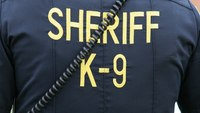 Man repeatedly stabs K-9, is fatally shot, officials say