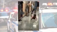 'Slip 'N Slide' video at Mass. police academy results in two troopers put on leave