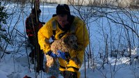 Mass. FFs rescue dog that fell through ice on river