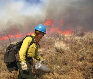 Wildland fire contracts are awarded at the local, regional, state and federal levels.