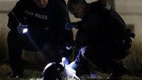 2 officers shot in Ferguson ambush released from hospital