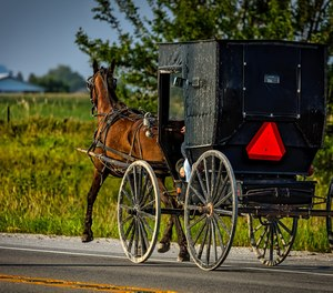 Seven members of a family riding in a horse and buggy were injured, some critically, in a collision on Sunday.