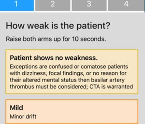 "The app utilizes ""stroke scales"" that measure certain physical indicators. (Photo/Stroke Scales)"
