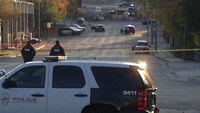 How would more cops impact Austin's rising gun violence? What the chief and experts say.