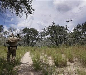 In this Sept. 5, 2014 photo, a U.S. Customs and Border Protection Air and Marine agent looks for signs along a trail with assistance from agents in a helicopter near the Texas-Mexico border near McAllen, Texas. (AP Image)