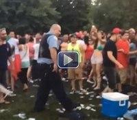 Video: 4 Chicago officers injured in park melee