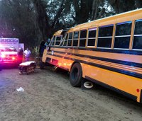 Girl, 5, dies after school bus crashes into tree in Ga.