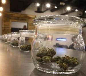 There are several strategies the state is employing to reduce the incidence of stoned driving because evidence from other states that operating under the influence (OUI) of psychoactive cannabis has public safety impacts is mounting.
