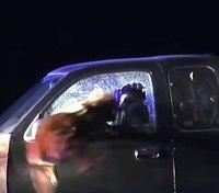 Video: Calif. K-9 crashes through truck window to apprehend suspect