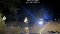 Video: Man fires on Ga. deputies after high-speed pursuit