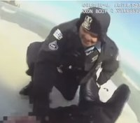 Chicago officers rescue man, dog from frozen Lake Michigan