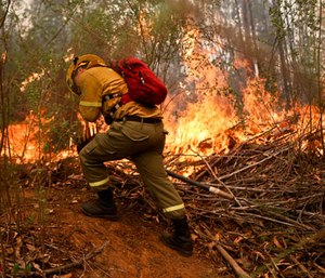 A firefighter digs a trench in an effort to stop the advancement of a wildfire in the Florida community of Concepcion, Chile, Friday, Jan. 27, 2017.  (AP Photo/Esteban Felix)